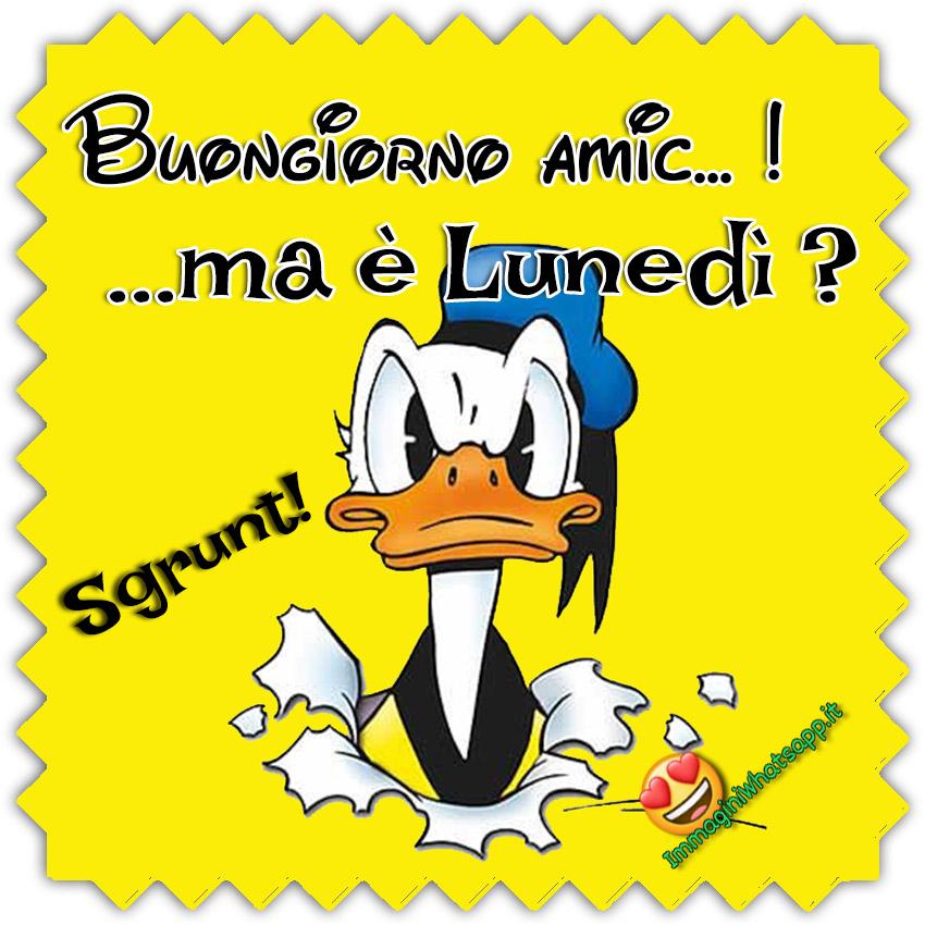 Buon Lunedi Immagini Divertenti Con Paperino Immaginiwhatsapp It