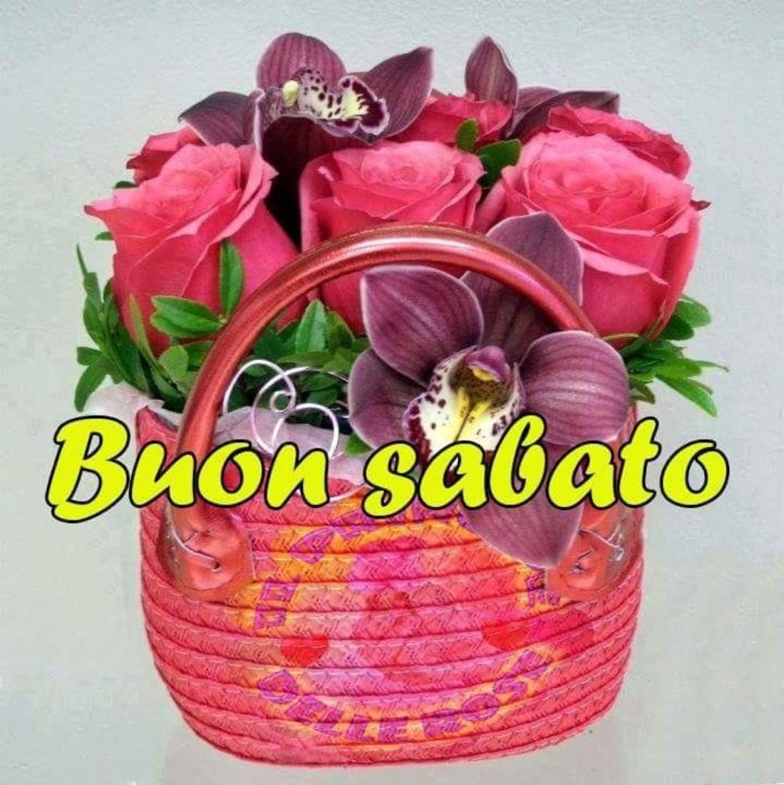 Buon Sabato Gratis 674 Immaginiwhatsappit