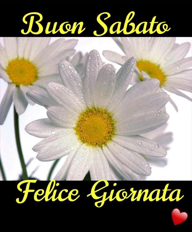 Buon Sabato Immagini Da Condividere Gratis 4581