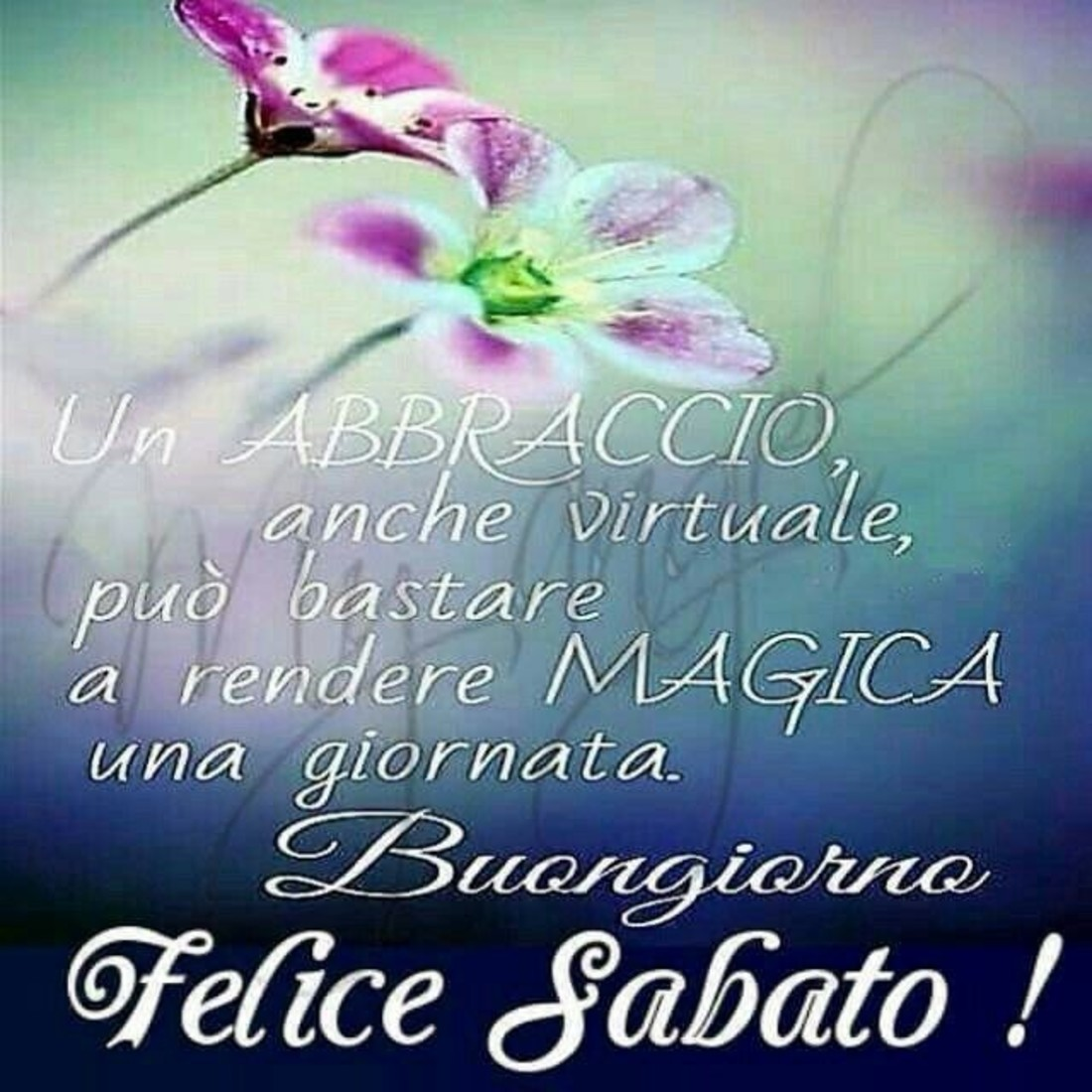 Buon Sabato Mattina Immaginiwhatsapp It