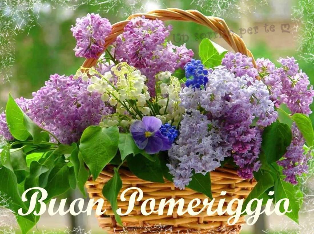 Buon pomeriggio con i fiori 4