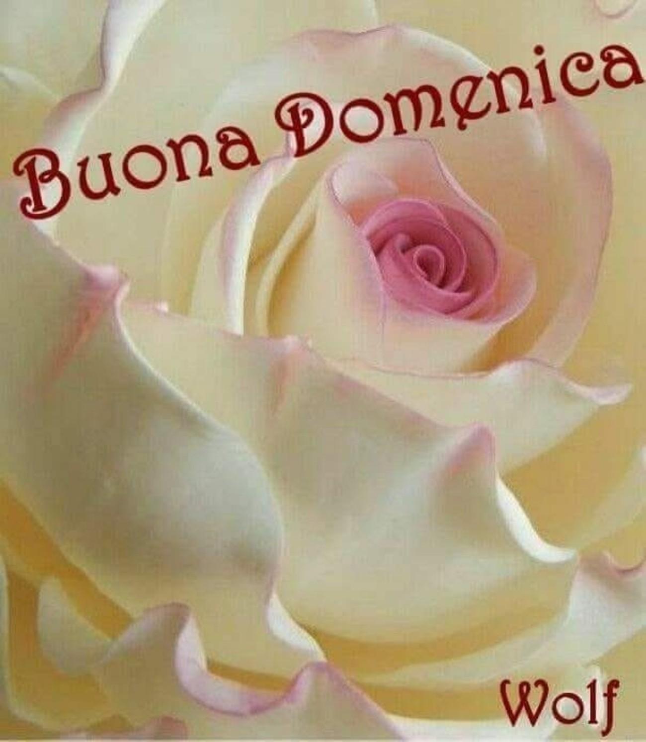 Buona Domenica A Tutti 3587 Immaginiwhatsapp It