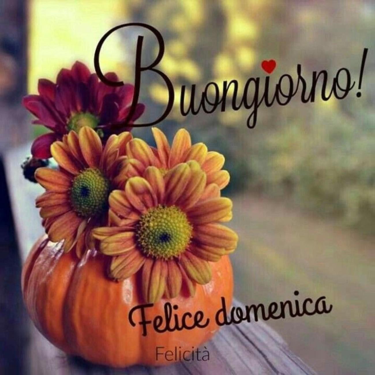 Buona Domenica Bellissima Immaginiwhatsappit