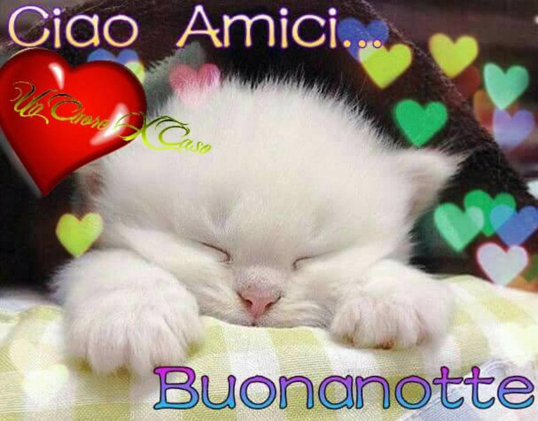 Buonanotte Gratis Immaginiwhatsapp It