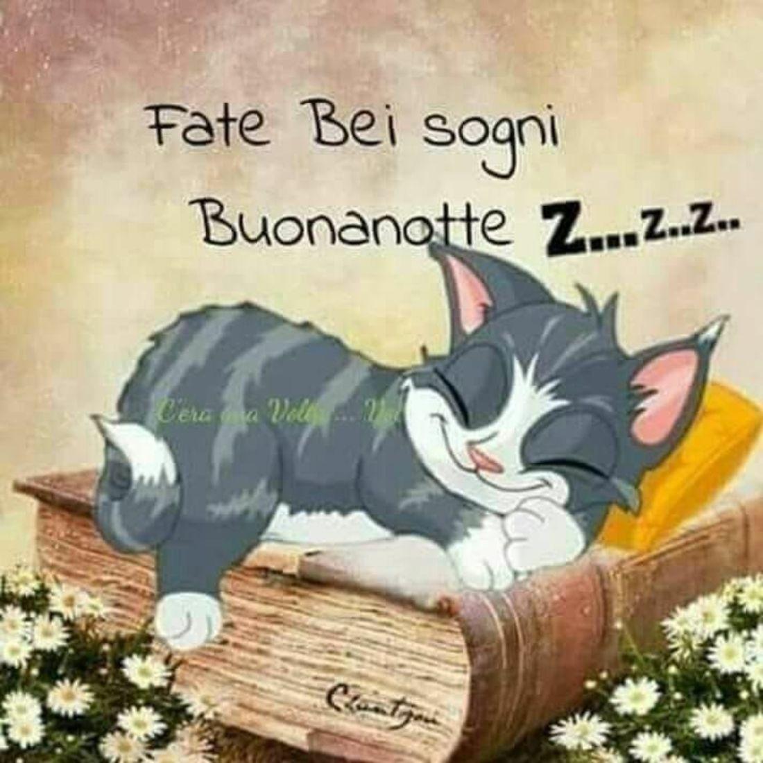 Fate Bei Sogni Buonanotte Immaginiwhatsapp It