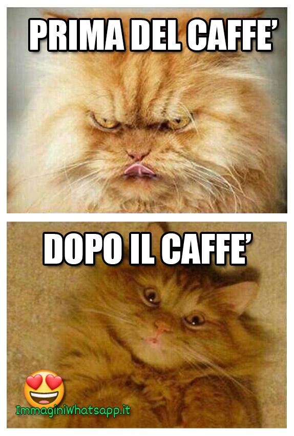 Immagini WhatsApp divertenti caffè