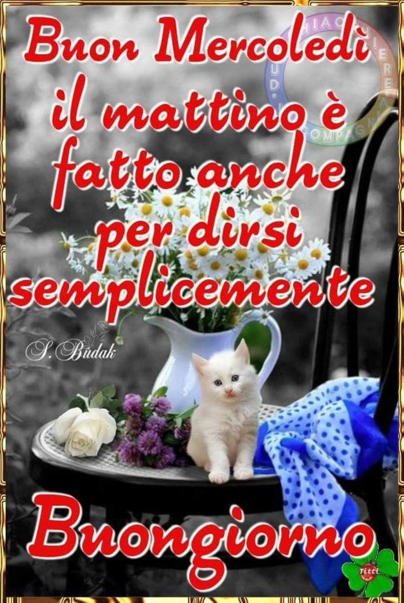 Sulle Ali Dei Sogni Archives Immaginiwhatsapp It