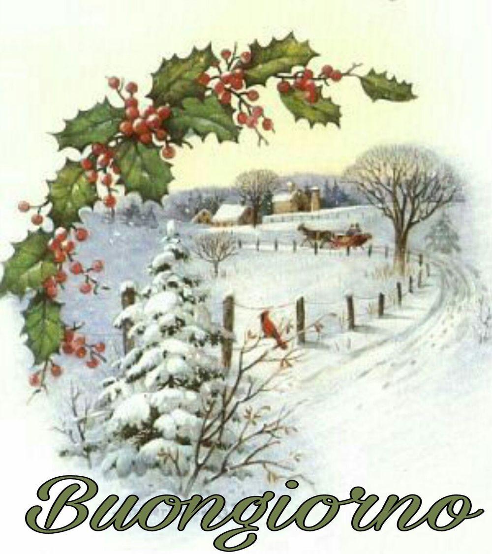 Buongiorno natalizio foto gratis 9