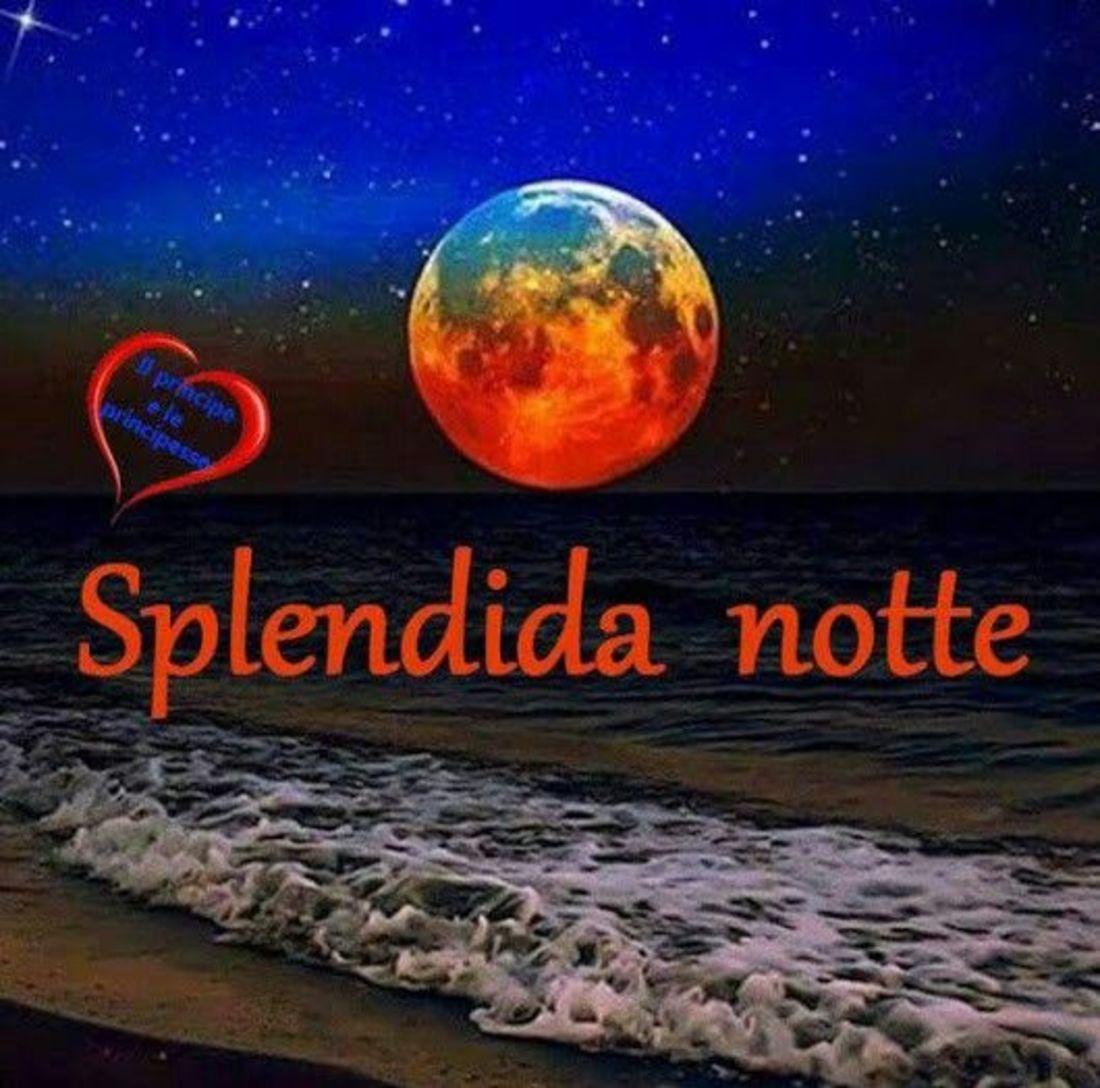 Felice Notte Immaginiwhatsapp It